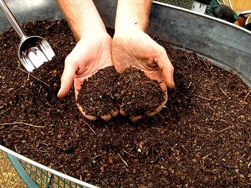 kak-pravilno-sdelat-kompostnuyu-yamu