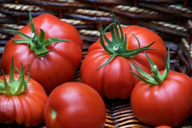 Сорта томатов для Подмосковья для теплиц и открытого грунта