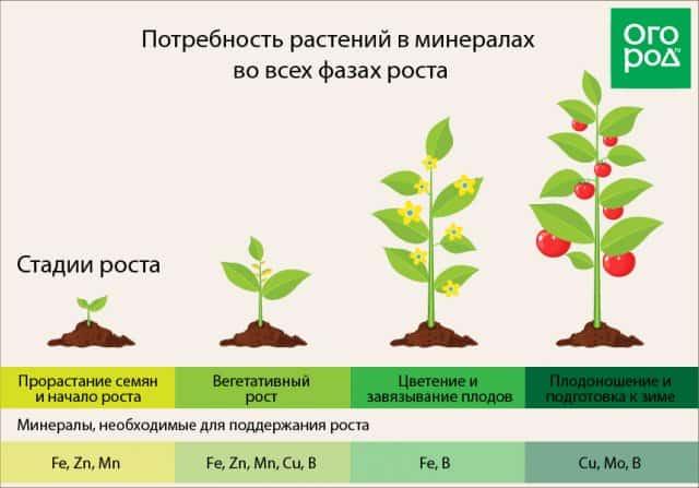Потребность растений