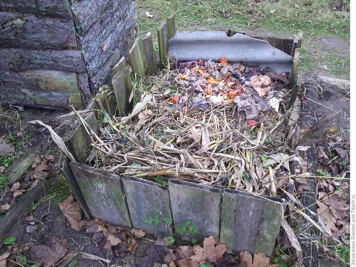 Торф на огороде польза или вред