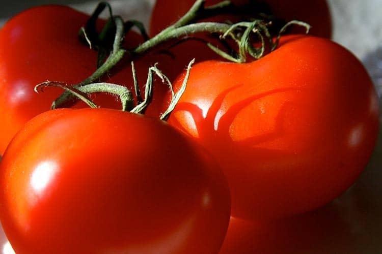 Как пасынковать помидоры в теплице, правила и рекомендации