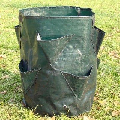 Выращивание клубники в мешках круглый год: особенности грунта и агротехники