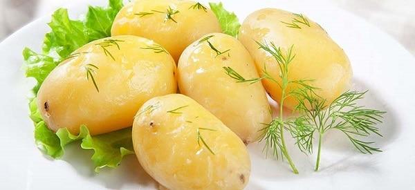 Описание сорта картофеля импала