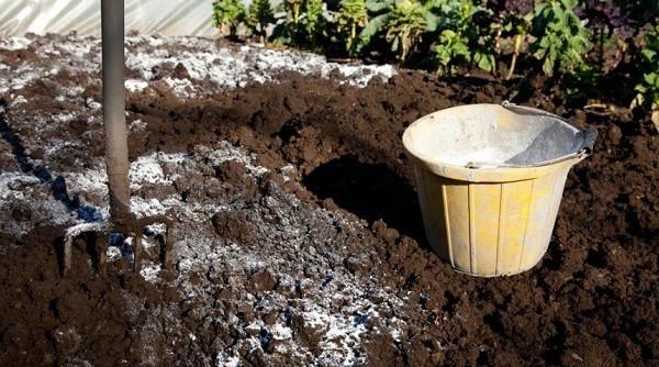 Известковые удобрения для раскисления почвы