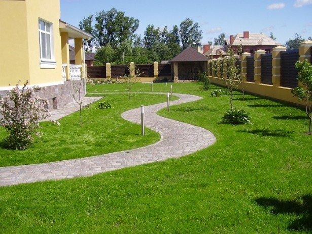 купить датскую газонную траву